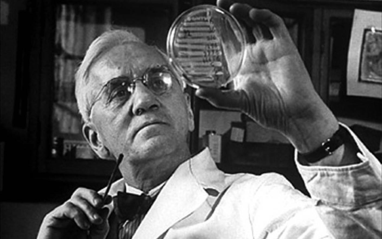 Ciuperca istorică care a dat lumii Penicilina