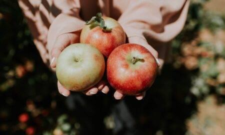 Beneficiile incredibile pe care consumul de mere le are asupra sănătății