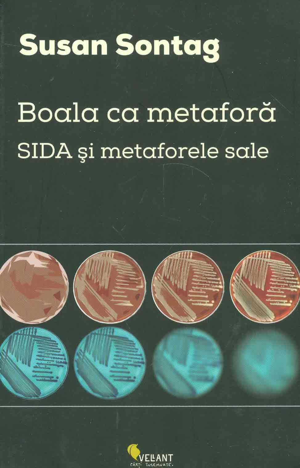 Susan Sontag, Boala ca metaforă, SIDA și metaforele sale