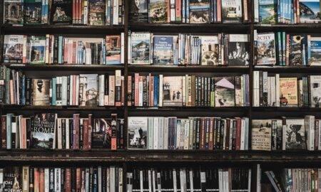5 romane scrise în versuri pe care trebuie neapărat să le citiți