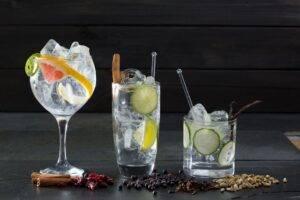 Top lucruri interesante pe care sigur nu le știai despre gin!