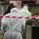 Autoritățile au confirmat: o crimă înfiorătoare s-a produs în Maramureș! O mamă și-a ucis cei doi copii