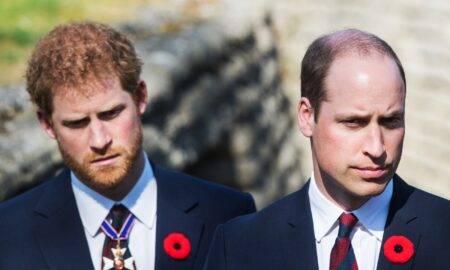 Harry nu se va întâlni cu tatăl sau cu fratele său când va ajunge în Marea Britanie decât în ziua ceremoniei