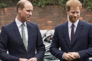 S-au aflat o parte din motivele pentru care William și Harry nu vor mai putea avea o relație apropiată