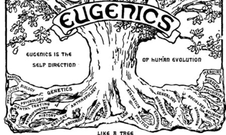 Eugenismul, modul în care naziștii au decis să își purifice rasa