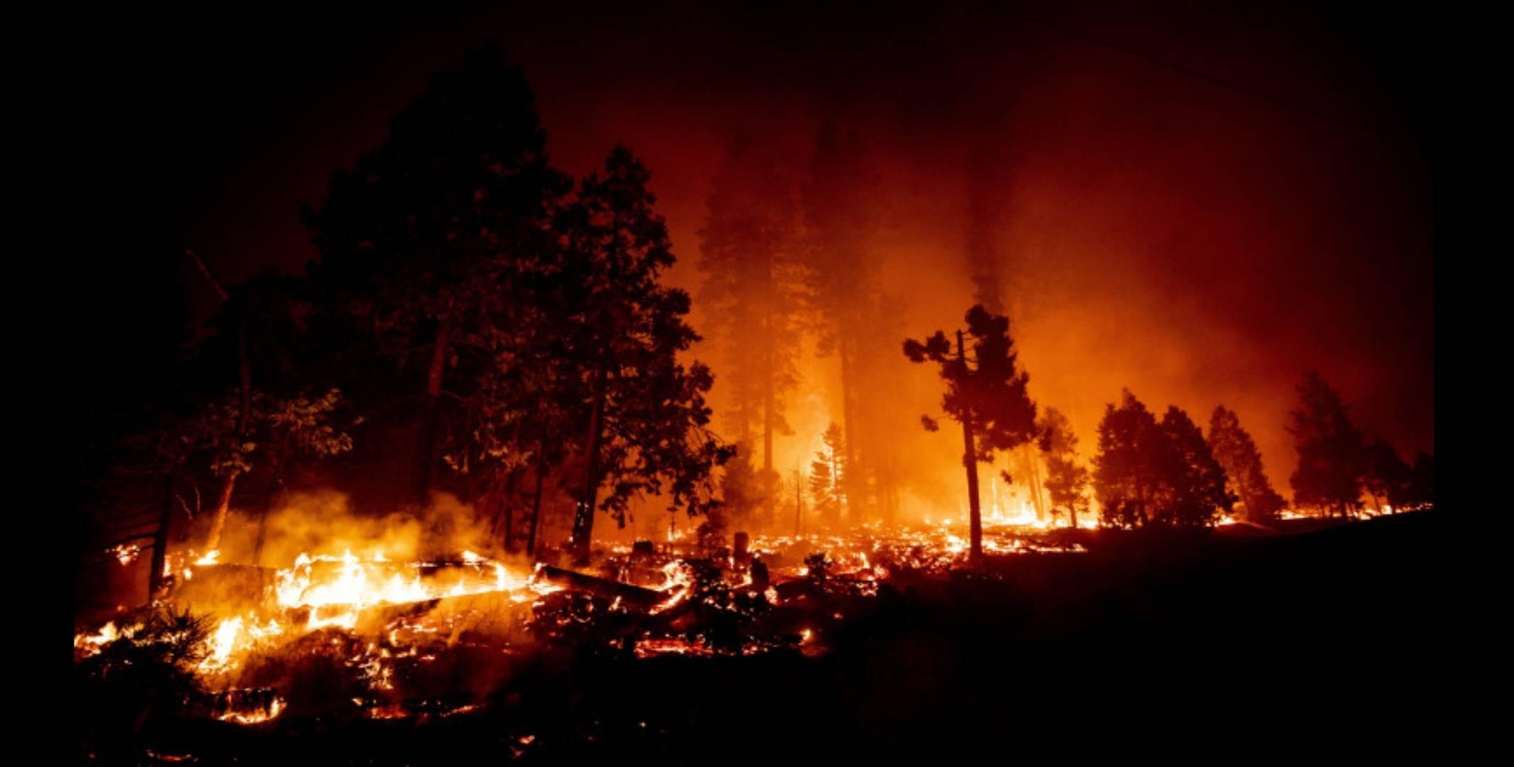 Bulgaria, grav afectată de incendiile forestiere! Au fost raportate primele decese