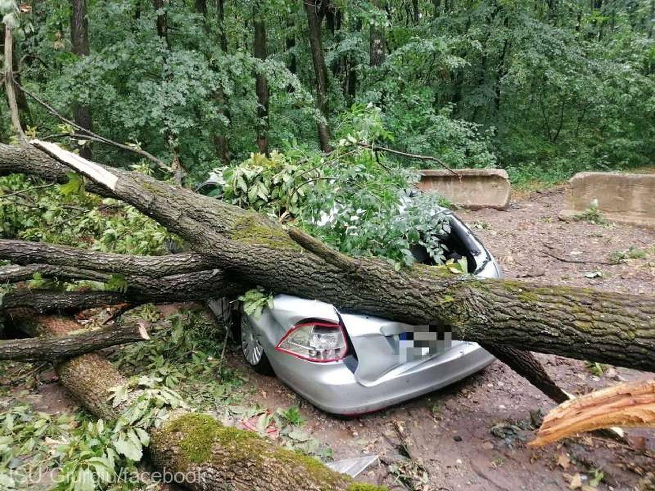 România, devastată de furtună! Sute de locuințe au fost afectate și mii de oameni au rămas fără curent electric