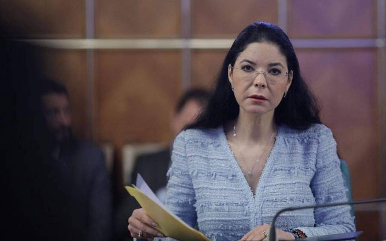 Ana Birchall, primele declarații după arestarea lui Săvulescu