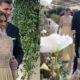 Simona Halep a strălucit pe ringul de dans la propria nuntă. Campioana a fost admirată de toți invitații