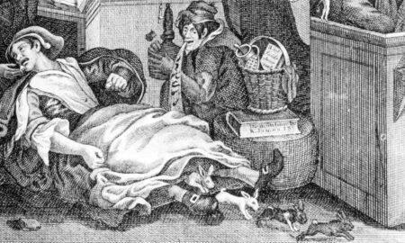 Mary Toft este una dintre cele mai satirizate femei. Cum a reușit să convingă o lume întreagă că naște iepuri