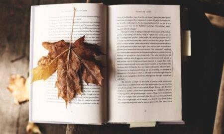 6 titluri de cărți cu care să-ți începi toamna într-o notă culturală perfectă