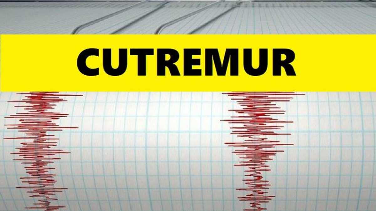 Alertă de cutremure în România! Un nou seism de 4.5 grade a avut loc în Vrancea