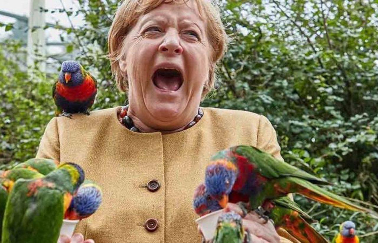 Imaginea zilei vine de la Angela Merkel. Prezent într-un parc, cancelarul german a creat un moment inedit