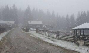 După Transfăgărășan, prima zăpadă s-a așternut astăzi și în Maramureș