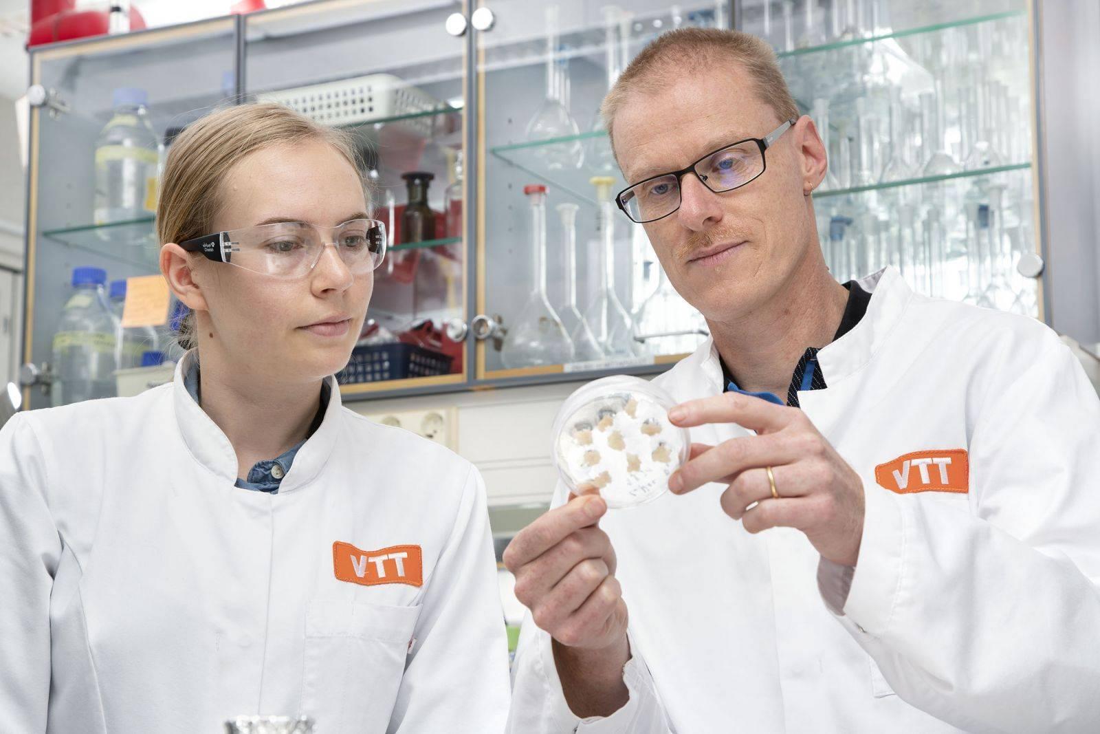 Finlanda a reușit să producă în laborator prima cafea bazată pe boabe din culturi de celule plutitoare