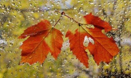 Meteorologii anunță schimbări radicale de vreme! Iată cum va fi vremea până pe data de 31 octombrie
