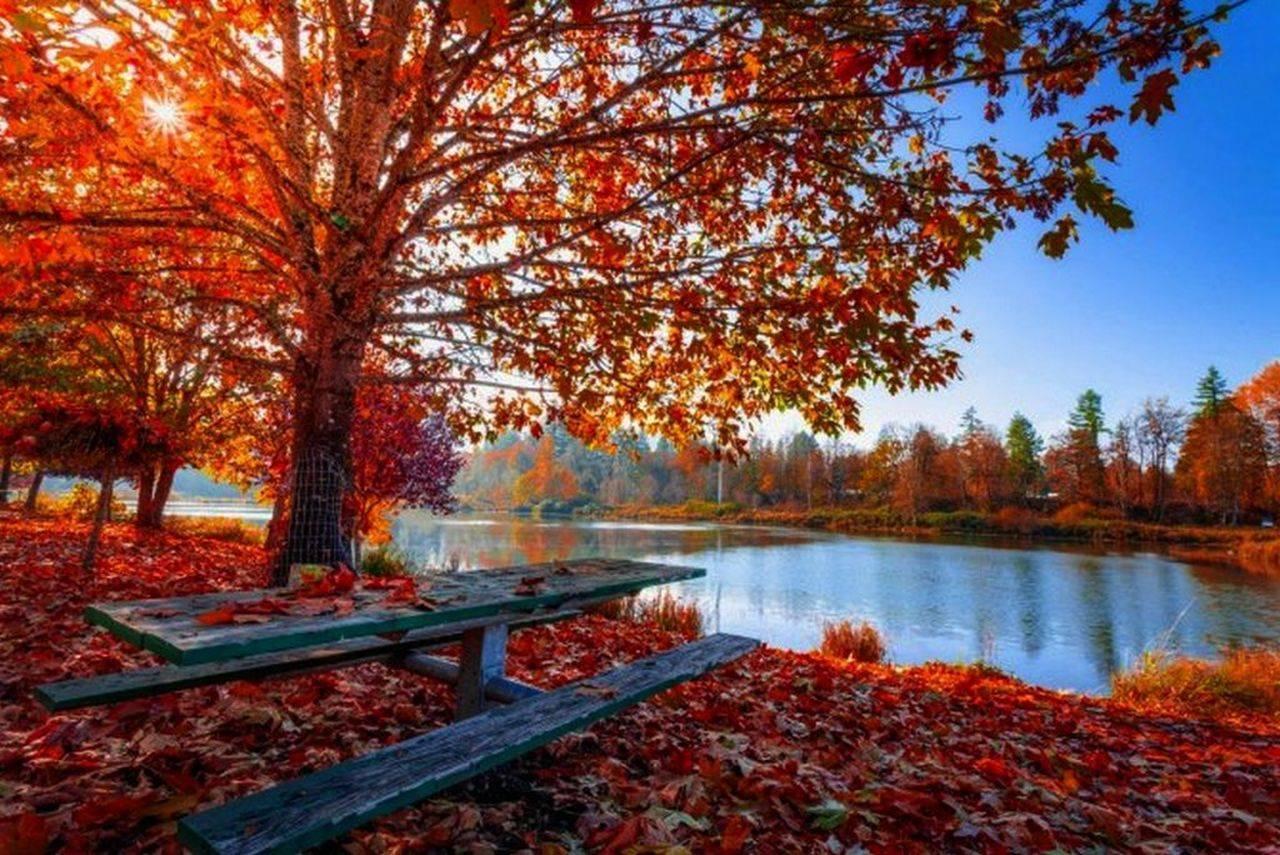 Prognoza meteo pentru luna octombrie. ANM anunță temperaturi ieșite din comun