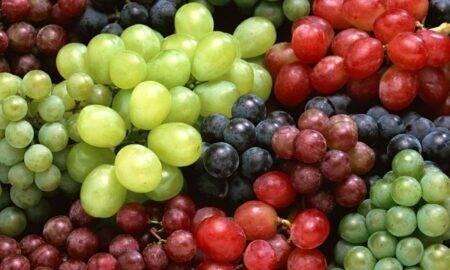 Strugurii te pot îngrășa? Iată cele mai mari beneficii ale celor mai îndrăgite fructe din acest sezon