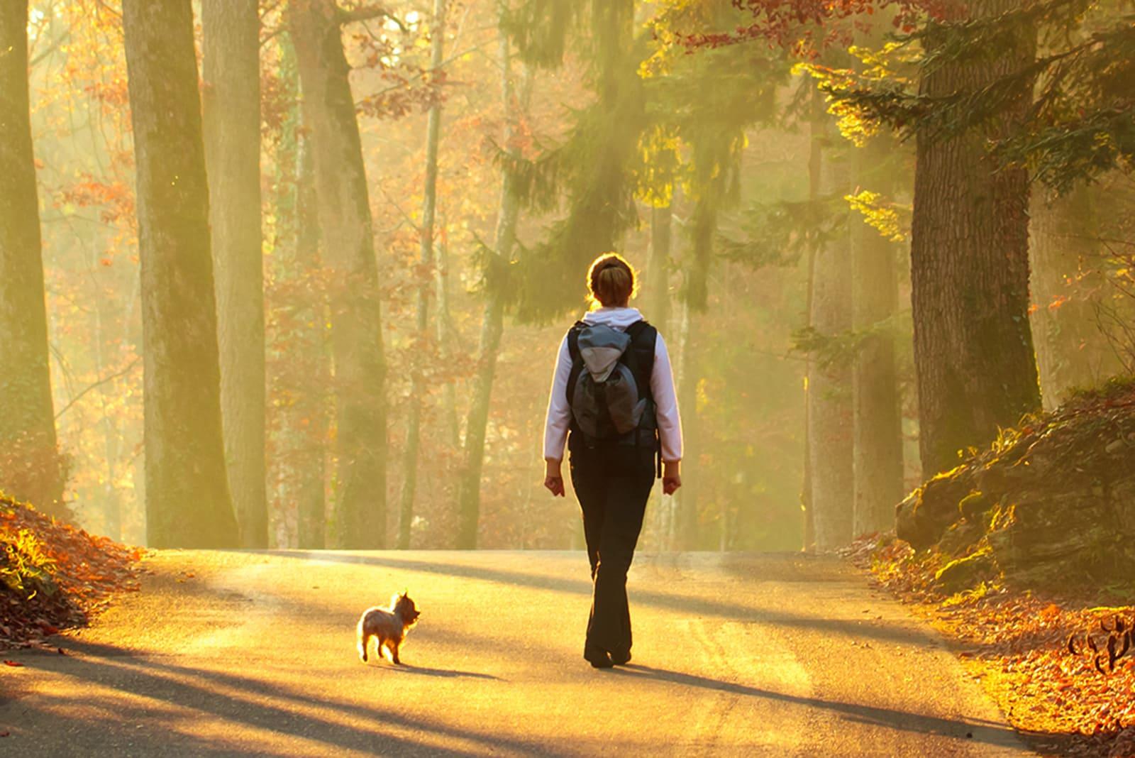 3 octombrie. Astăzi sărbătorim Ziua Mondială a mersului pe jos
